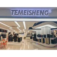 GUANGZHOU TEMEISHENG ELECTRIC CO.LIMITED