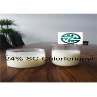 China White liquid Chlorfenapyr 24% SC / CAS 122453-73-0 / C15H11BrClF3N2O wholesale