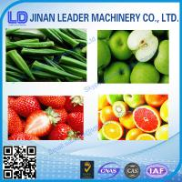 China balls or Strip Fruit and vegetable chips      Production Line wholesale