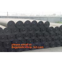 China Polyester Needle Punched Nonwoven Geotextile Membrane price,Polyester Needle Punched Nonwoven Geotextile Membrane BAGEAS wholesale