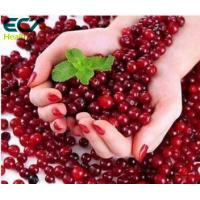 China Beauty Effect Cranberry Extract Powder , Natural Fruit Extract Powder For Obesity wholesale