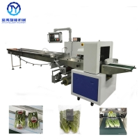 China Fruit Vegetable Packing Machine 600 Model Full SS wholesale