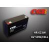 China HR653W 6V 13AH Valve Regulated Lead Acid Battery Maintenance Free For Alarm System wholesale