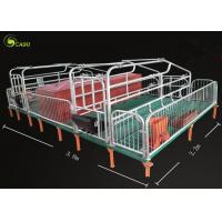 China Pig Breeding Equipment Galvanized Pig Limit Pen Elevated Pig Farrowing Crate wholesale