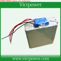 China customized battery 12v 20Ah battery packs with BMS and charger wholesale