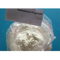 Buy cheap Supply Free Sample Testosterone Propionate Powder 57-85-2 , Muscle Gaining  Steroid from wholesalers