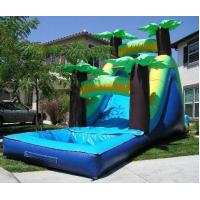 China Tropical Water Slide wholesale