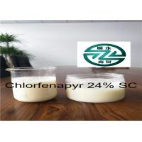 Quality 6-8 PH Organic Insecticides Chlorfenapyr Technical 24% SC / CAS 122453-73-0 for sale