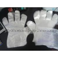 China Disposable Glove (YDGV-01) wholesale