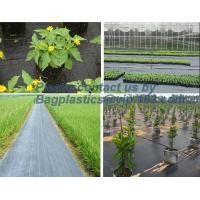 China Water management weeb control pavement preservation courtyard beautify anti insect anti mold seedbed protection vegetati wholesale