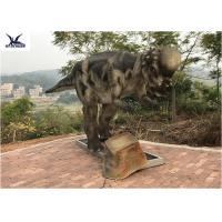 China Pachycephalosaur Robotic Dinosaur Garden Statue Soft And Smooth Surface Treatment wholesale