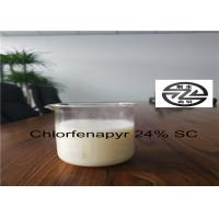 Quality Chemical Pesticide Chlorfenapyr 24 SC , Organophosphate Insecticides for sale