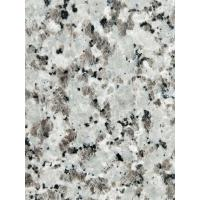 China Decorative Granite Stone Tiles / White Galaxy Granite Floor Tiles wholesale