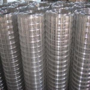 China Hot Dip Galvanized welded wire mesh  wholesale