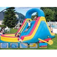 China Easy Handing Inflatable Castle Water Slide (OL-28001) wholesale