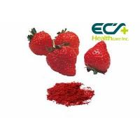 China Nutritional Organic Superfood Powder , Micronized Freeze Dried Strawberry Powder wholesale