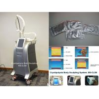 Buy cheap Fat Freeze Cryolipolysis Body Slimming Machine Fat Burning Equipment With Cooling Technology from wholesalers