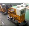 Quality 50Hz Gas Backup Generator , 20kw brushless alternator IP23 for sale