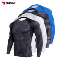 Buy cheap Plus Size Custom Rash Guard Long Sleeve Anti Bacterial Breathable Cloth Material from wholesalers