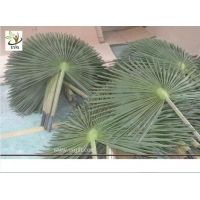 China UVG material uv fake palm fronds in silk leaves for outdoor watertown landscaping PTR042 wholesale