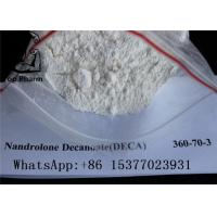 China White Powder Deca Nandrolone Decanoate CAS 360-70-3 For Fitness Muscle Gaining wholesale