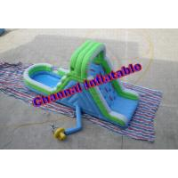 China Inflatable Blue and Green Water Slide (Residential) wholesale