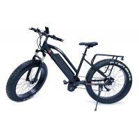 China High Speed  1000w Bafang Mid Drive Motor Mountain Electric Fat Bike with front  suspension fork wholesale