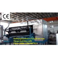 China Paper Pulp Molding Egg Tray Machine with CE Certificate on sale