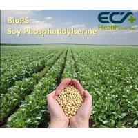 China Food Extract Brain Health Supplements SC-CO2 Extracted IP Certificated Solvents Free wholesale
