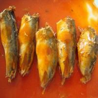 Quality Canned Mackerel Fish in Tomato Sauce for sale
