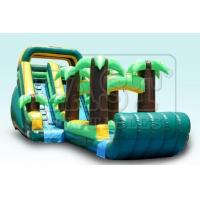 China Inflatable Water Slides (E3-019) wholesale