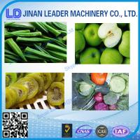 China All kind of flavor Fruit and vegetable chips      Production Line wholesale