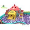 China Rainbow Chicks Kids Plastic Indoor Playground With Slide Multi - Functional wholesale