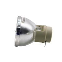 China BL FP230G BL FP230H  SP 8JQ01GC01 DH1010 Optoma Projector Bulbs wholesale