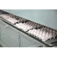 China Waste Paper Pulp Molding Egg Tray Machine 50000pcs Per Working Day on sale