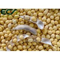 China Nutrient Content 70% Soy Lecithin Powder Synthesis And Metabolism Function wholesale