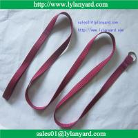 China 120cm Long Nylon Dog Pet Leash  Lead For Daily Walking (1.0cm~2.5cm in width) wholesale