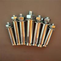 China Industrial Stainless Steel Sleeve Anchor Bolts Easily Penetrate For Dry Environments wholesale