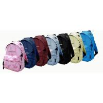 Lady fashion handbag - RS-0196