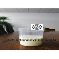 China C15H11BrClF3N2O Pest Control Insecticide Chlorfenapyr Technical 36% SC wholesale