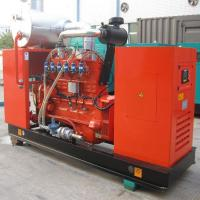 Quality 320kw 400 kva Water Cooled Natural Gas Backup Generator , 300KW 3 phase Leroy Somer Alternator for sale