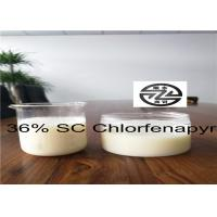 China Agricultural Chlorfenapyr 36 SC 95% TC 10% EC For Seed Treatment Pesticide wholesale
