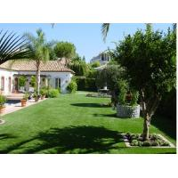 China Indoor Synthetic Turf Grass on sale