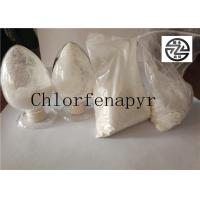 China Off - White Powder Agriculture Insecticide High Purity 98% TC Chlorfenapyr wholesale