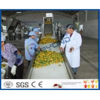 Buy cheap Complete Turn key Project Mango Fruit Juice Processing Line High Engery Saving from wholesalers