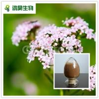 China Herb extract Valerian Root Extract 0.8% valeric acid HPLC 4:1 8:1 wholesale