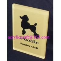China Custom made branding advertising solid acrylic block wholesale wholesale