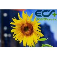 China Healthy Positive Sunflower Extract Brain Power Supplement High Content ﹥30% wholesale