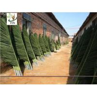 China UVG custom made indoor plastic coconut palm tree artificial leaves for beach landscaping PTR041 wholesale