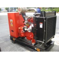 Quality 40KW LPG Gas Backup Generator With Leroy Somer Brushless Alternator Generator , 24 V Motor for sale